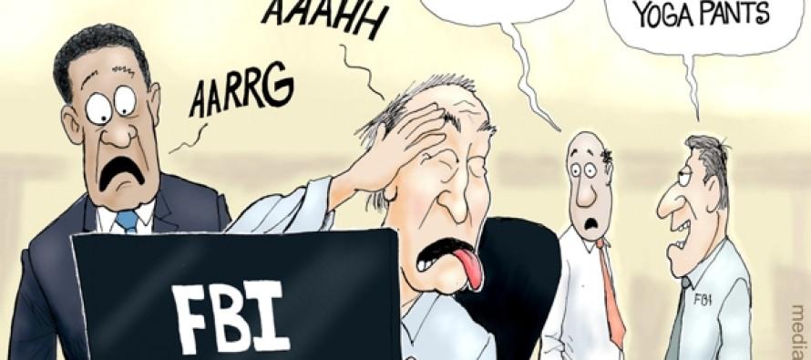 Hillary FBI Files (Cartoon)