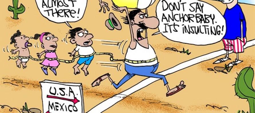 Anchor Babies (Cartoon)