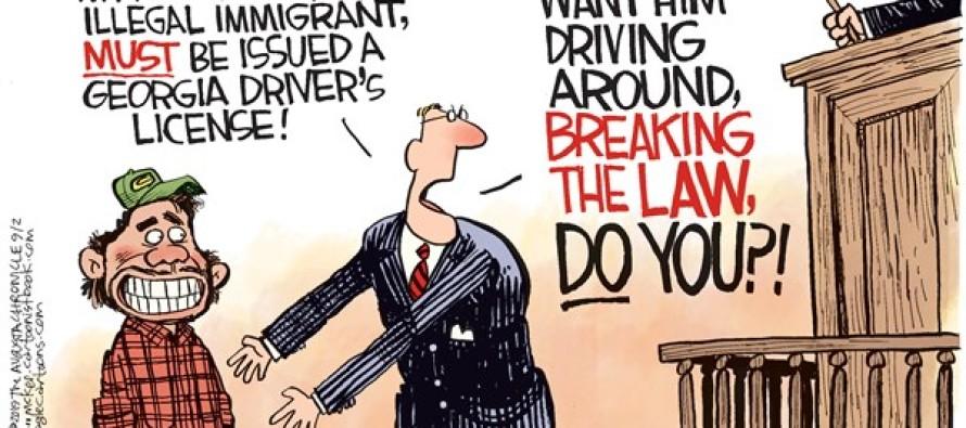Illegal Licenses (Cartoon)