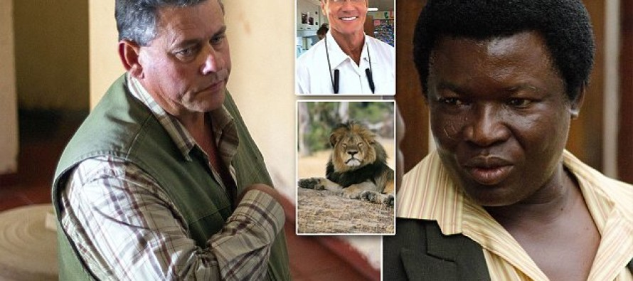 Zimbabwe has decided the dentist who shot Cecil the Lion did nothing wrong