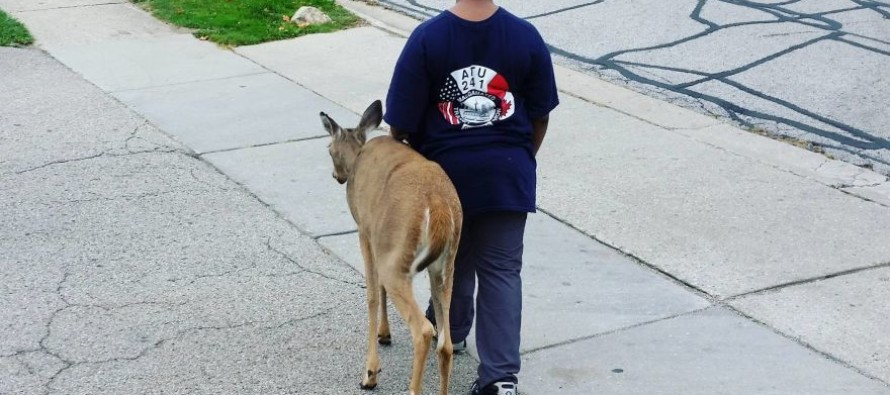 Young Boy Cares for Blind Deer, Helps it Find Food, Stay Safe