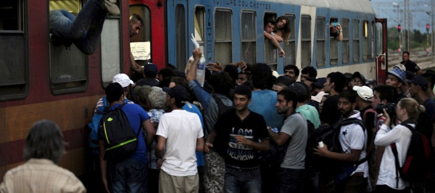 CHAOS: Trains SUSPENDED After Muslim Migrants SWARM Tunnel