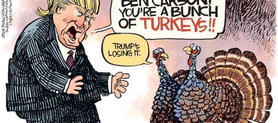 Trump Turkeys (Cartoon)