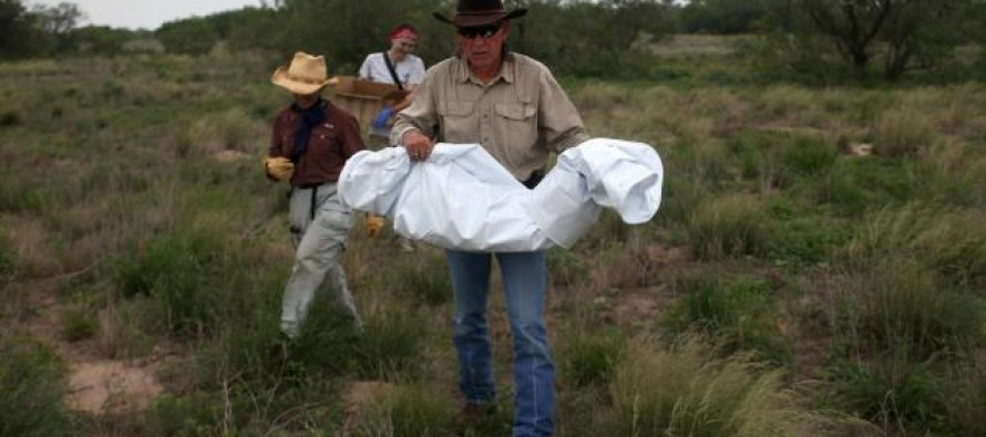 Texas Ranchers Fight Back Against Being Blamed for Dead Illegal Aliens Found On Their Land