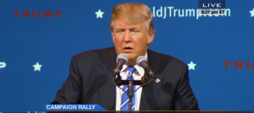 Trump Deports Liberal Protester from Event, Calls Him Fat