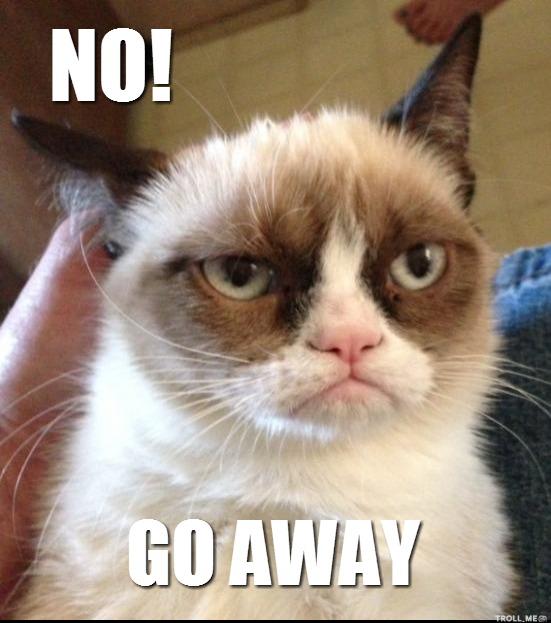 grumpy-cat-no-go-away-picture.jpg