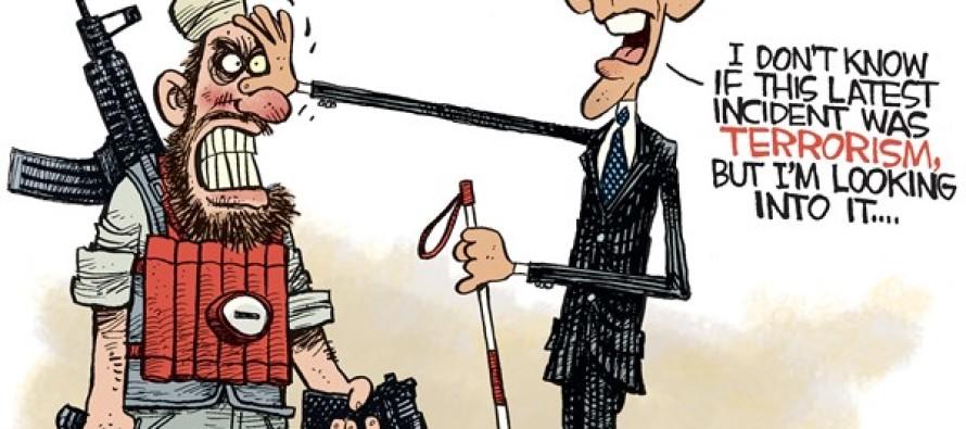 Blind Obama (Cartoon)