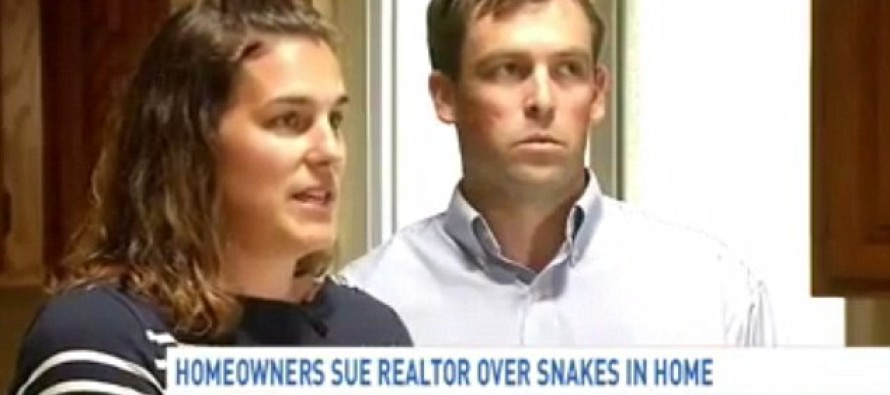 Couple Suing Realtor After Finding Their 'Dream Home' Was Infested With SNAKES