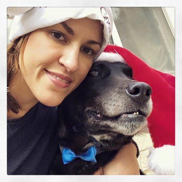 Dog Christmas3