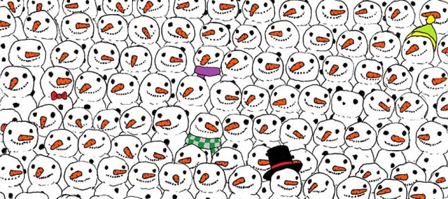 This Christmas Puzzle Is Going VIRAL! Can You Spot the Hidden Panda? [VIEW]