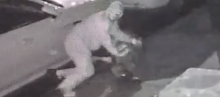 Who Are These Thugs? The Brutal Moment a 60-Yr-Old Jewish Man is Beaten in Savage Mugging