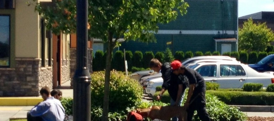 OBAMA'S AMERICA: Hardworking Man Offers 2 Panhandlers A Job, They REFUSE…Then He Does THIS [Pictures]