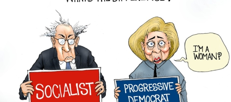 Socialist vs Democrat (Cartoon)