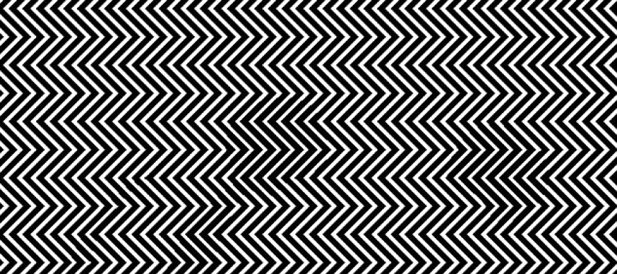 Can YOU Spot The Panda Hidden In These Zig-Zag Lines?