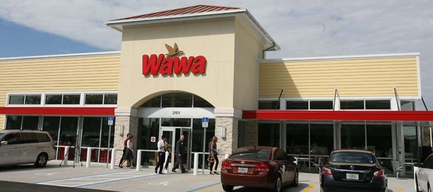 Welfare Users LIVID When They See THIS Grocery Store's Embarrassing Demand…