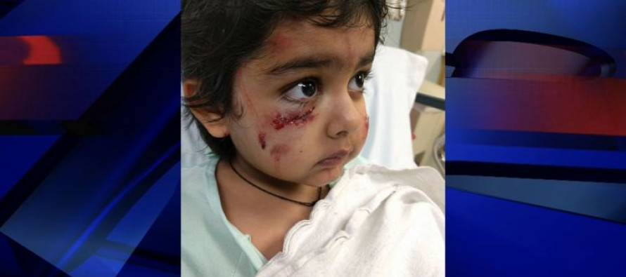 Six Year Old Boy Mauled By THIS Wild Animal Walking to School, When Good Samaritan Does THIS
