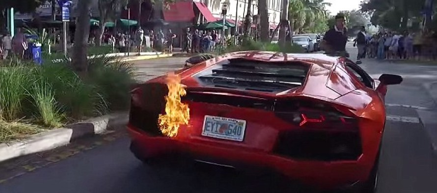 The Miami Restaurant Valet Who Burned Up A 200 Lamborghini By Excessively Revving The Engine