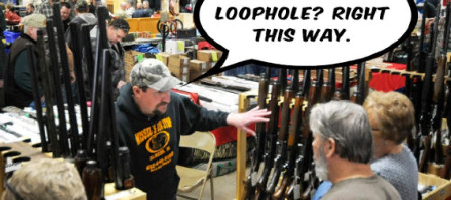 """DEVASTATING: This Video Proves The """"Gun Show Loophole"""" Democrats Always Complain About Doesn't Exist"""