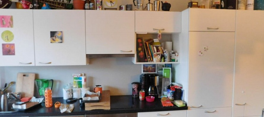 Can YOU Spot the Cat? This is Harder than You Think….