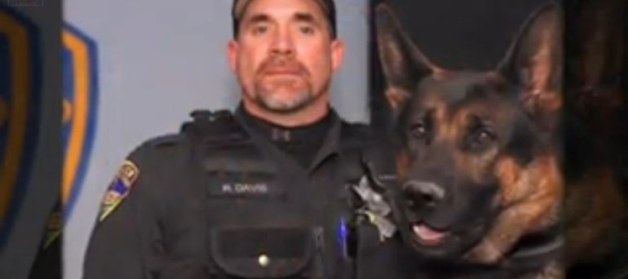 """If I Could Change Places With Him, I Would,"" Says Grieving Partner Of K-9 Hero"