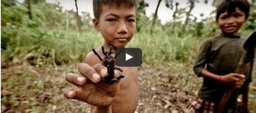 Do These Children Actually EAT Venomous Tarantulas?