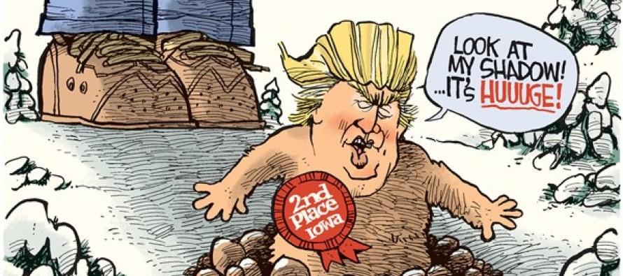 Trump Groundhog (Cartoon)