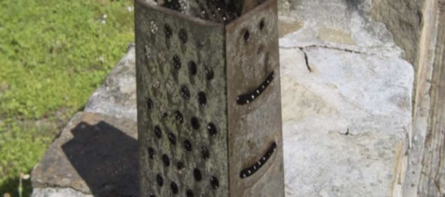 She Bought This Old Cheese Grater for 2 Bucks… But What She Does With It? WOW!