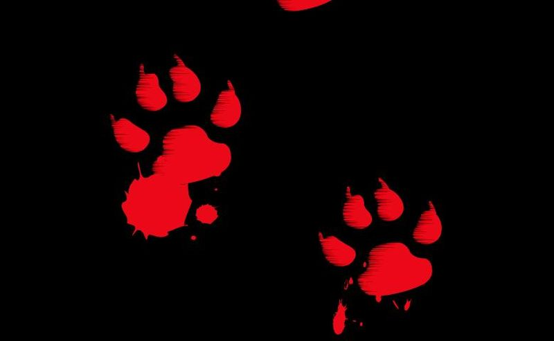 bloody paw