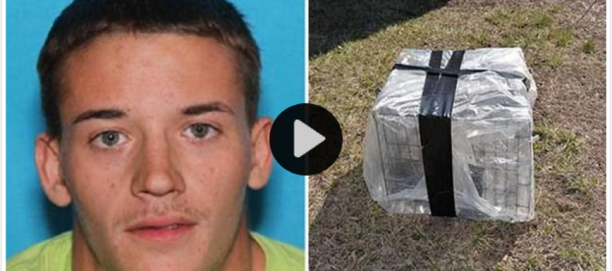 Man Arrested After Puppy Found Dead In Plastic-Wrapped Crate