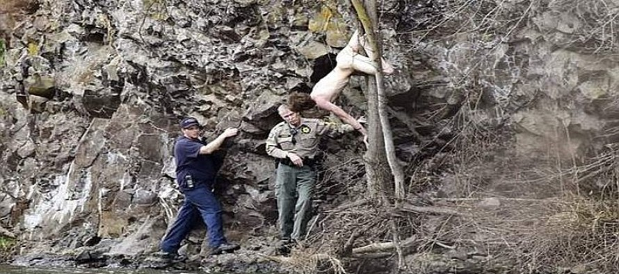 NAKED MAN Breaks In to Woman's House For A HUG- Then Jumps Down 50 Foot Cliff, Gets Stuck In….