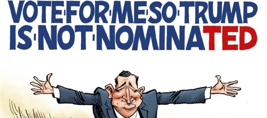 Cruz Catchphrase (Cartoon)