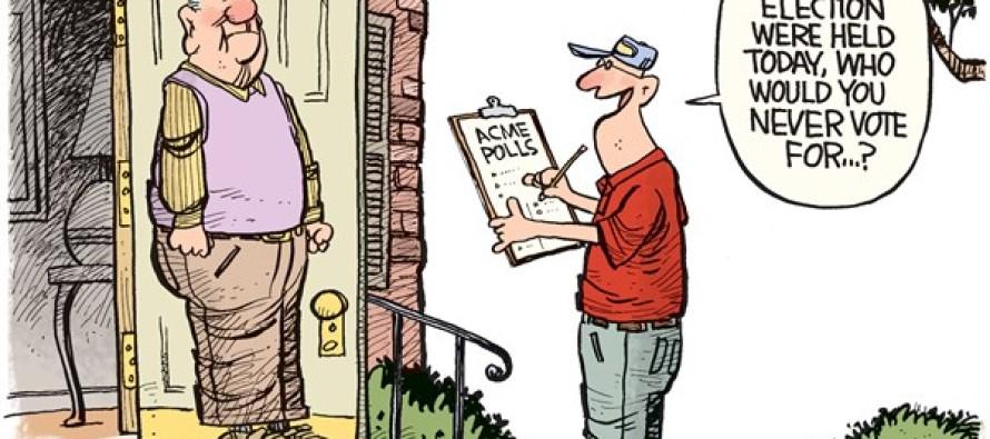 2016 Poll (Cartoon)