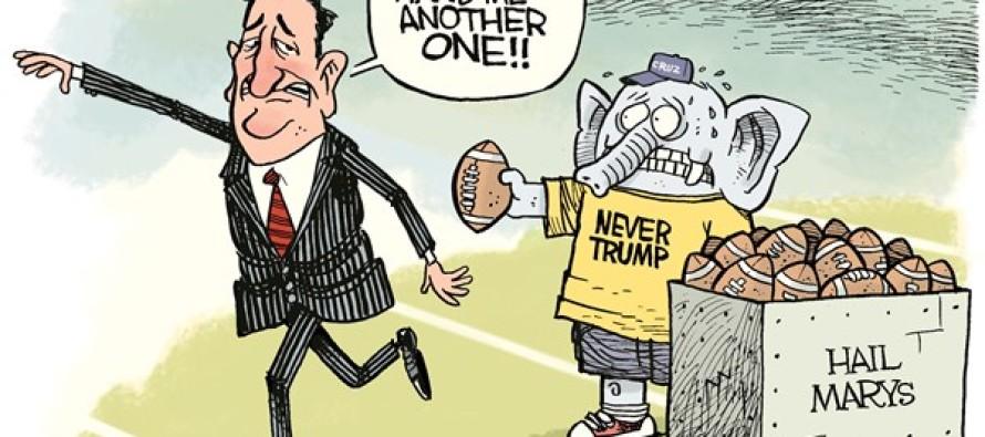Cruz Hail Marys (Cartoon)