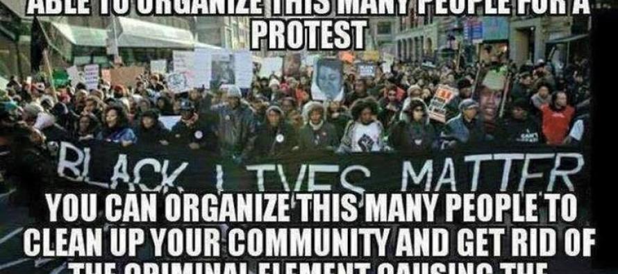 BRUTAL Meme Tells the REAL TRUTH about the #BlackLivesMatter Movement