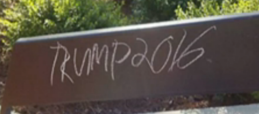 After More 'Offensive' Chalkings Appear, Crybaby College Kids Use YOUR Tax Dollars To Do THIS