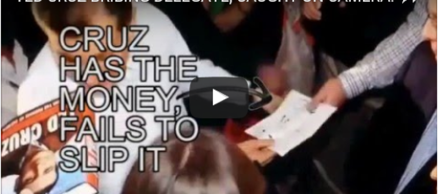 Video Allegedly Shows Cruz 'Bribing Delegate' – But Here's The TRUTH