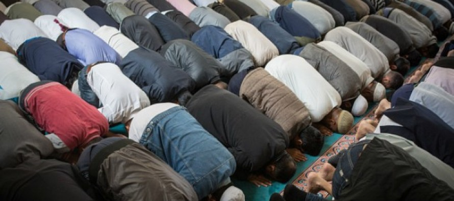 SCARY! This Is What 2/3 Of Muslims Would Do – In Case They Learned Of A TERROR PLOT!