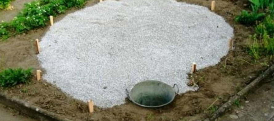 I Was Confused When She Dumped Gravel All Over Her Garden… But What Happened Next? Wow!