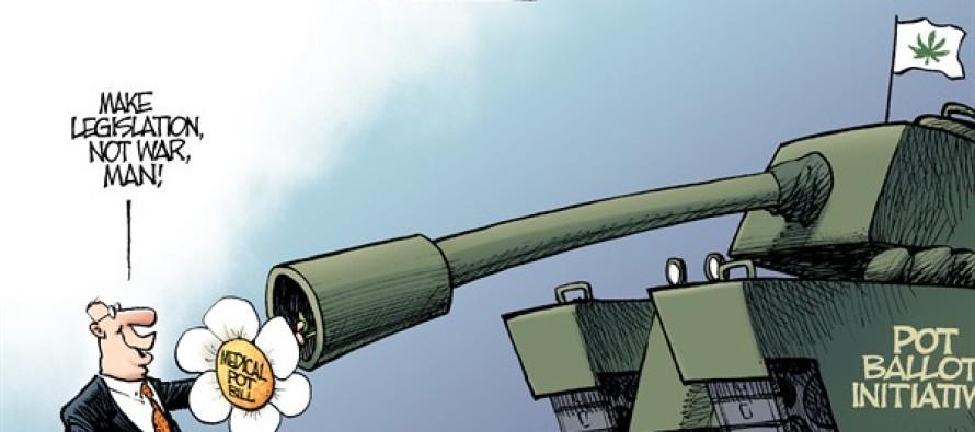 Local OH – Pot Fight (Cartoon)