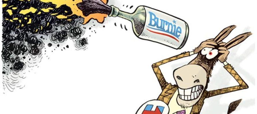 Burnie (Cartoon)