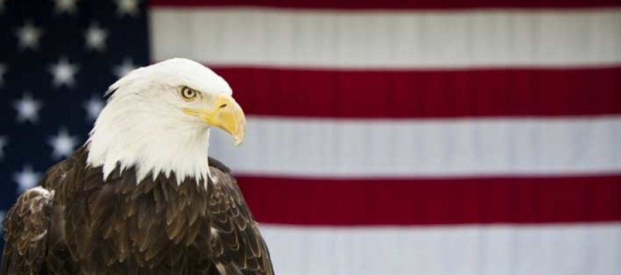 Obama Reportedly Pushing to Replace the Bald Eagle With THIS