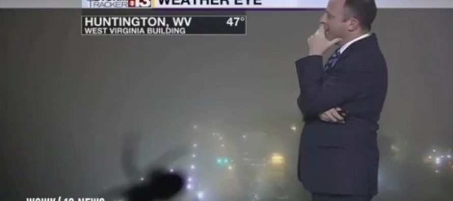 Weatherman Loses it Live on the Air, for THIS Hilarious Reason [VIDEO]