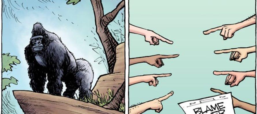 Harambe (Cartoon)