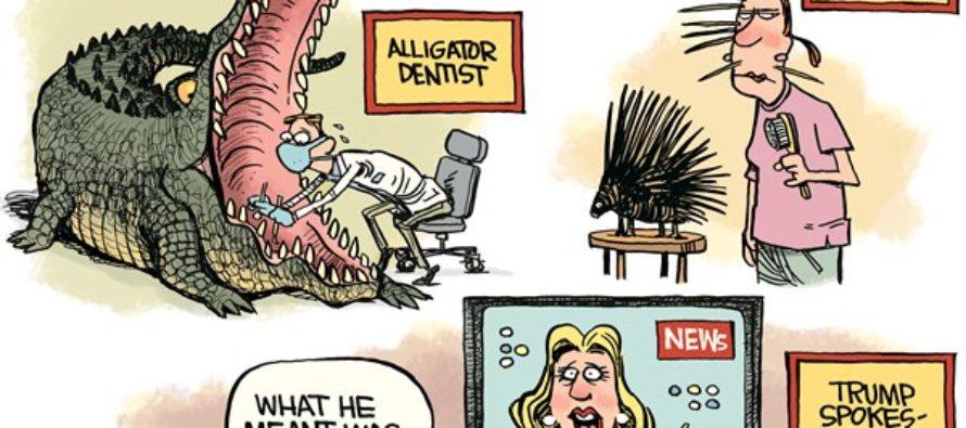 Trump Spokesperson (Cartoon)