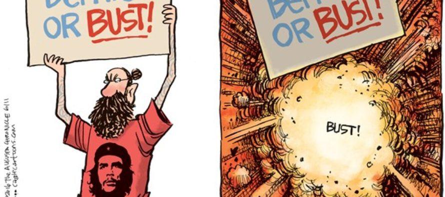 Bernie or Bust (Cartoon)