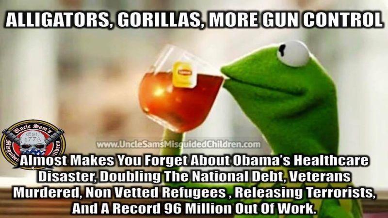 Alligators Gorillas Gun Control 800
