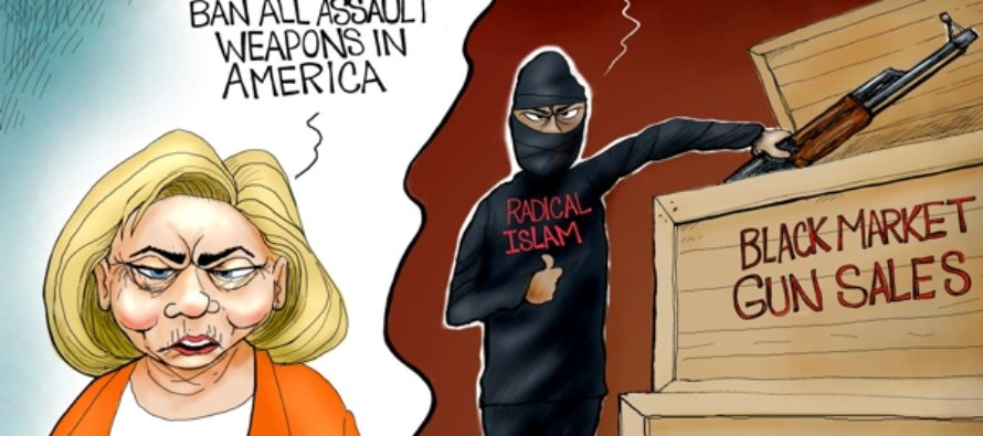 Disarming America (Cartoon)