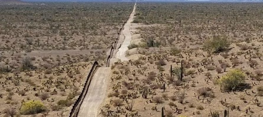 JUST IN: Lone Border Patrol Agent BRUTALLY Attacked By Illegal Alien, Who Reached For Agent's Gun…