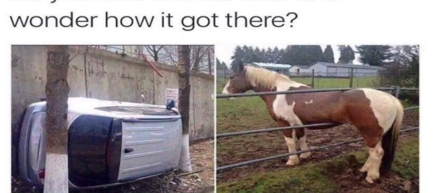 Do You Ever Look At Stuff and Wonder How It Got There? [Meme]