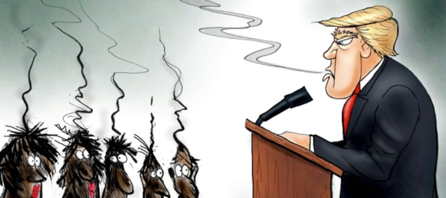 Bias Media Well Done (Cartoon)